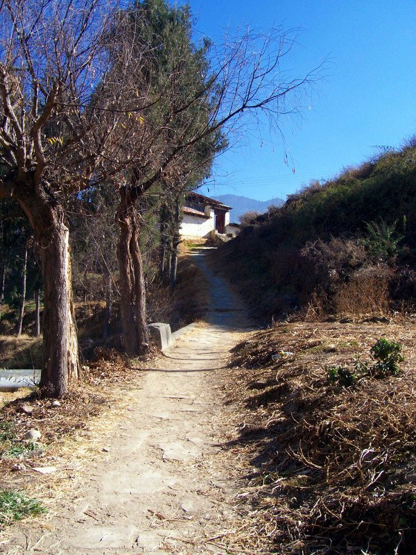 Natural footpath to one of the Best Places To Visit In Thimphu Bhutan, an ancient temple named Changangkha Lhakhang