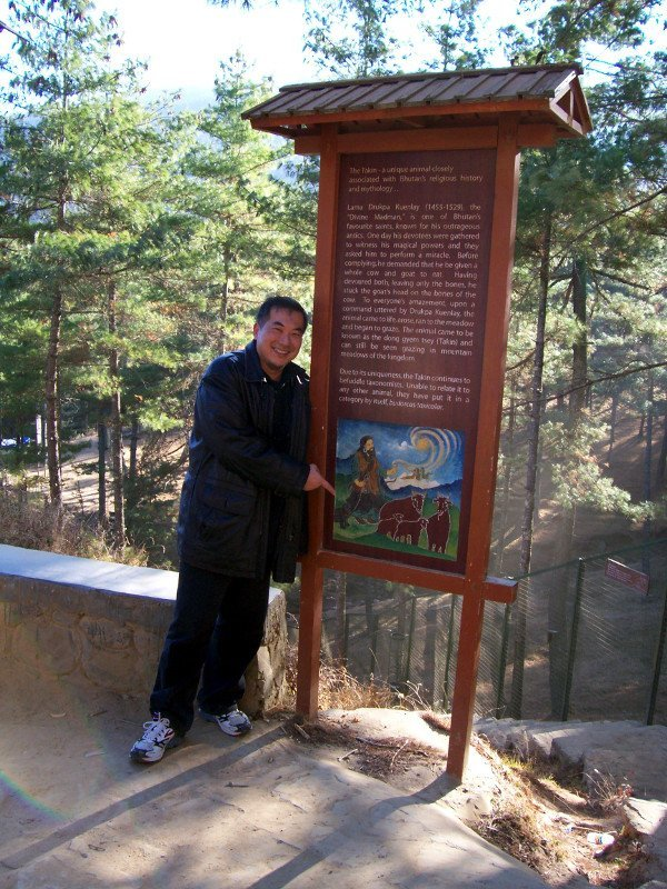 Best Places To Visit In Thimphu Bhutan - Takin Preserve - See Takin, Bhutan's National Animal - Timotheus with folklore signage
