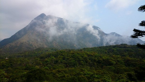 What To See In Hong Kong - Serene Mists On Mountains