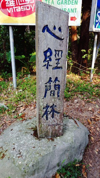 Things To Do In Hong Kong - Sign Post to Wisdom Path