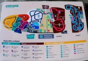 Entopia Map - Large