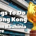 Things To Do In Hong Kong - See the Golden Bauhinia Square