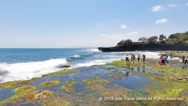 More Great Scenery at Tanah Lot Temple