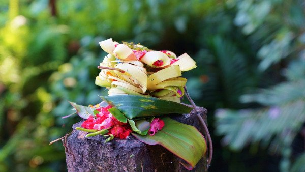 Canang Sari - Balinese Offering